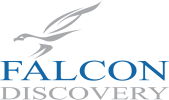 Consulting Partner: Falcon Discovery